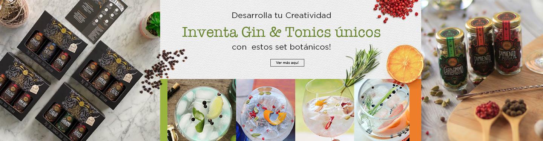 Set Gin y tónicos